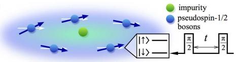 MagneticPolaron